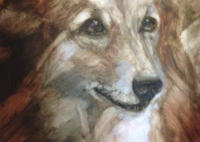 animal-portraits-pet-paintings-naramata-artist-julie-mai-painter-