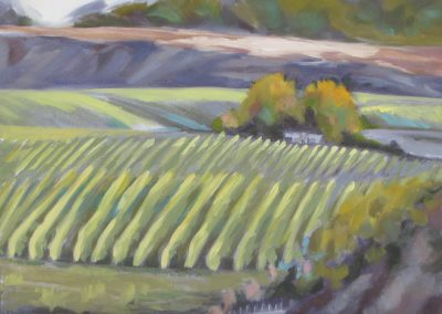 landscape-paintings-naramata-artist-julie-mai-painter-0058